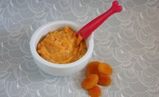 Introducing solid foods to your baby is the time to start making homemade baby food. Try baby food recipes including pureed apricot chicken recipe for baby