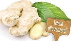 Tisane fai da te allo zenzero: 5 ricette per dimagrire e non solo! | Giardinieri in affitto