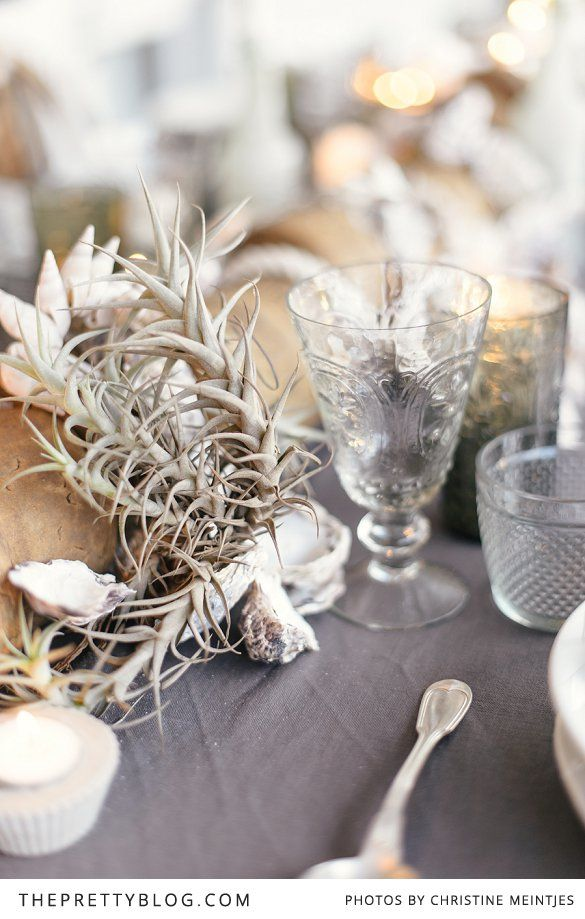 Beach inspired table setting | seashells as decoration | Photography by Christine Meintjies
