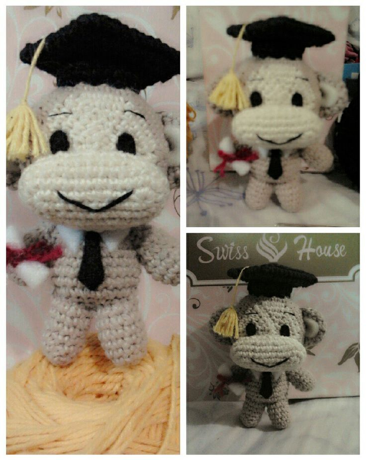 Monkey graduation