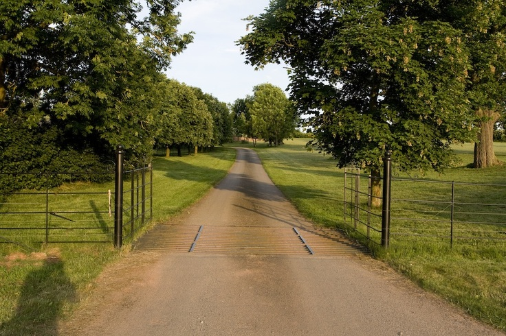 parkland setting with a cattle grid and metal fencing