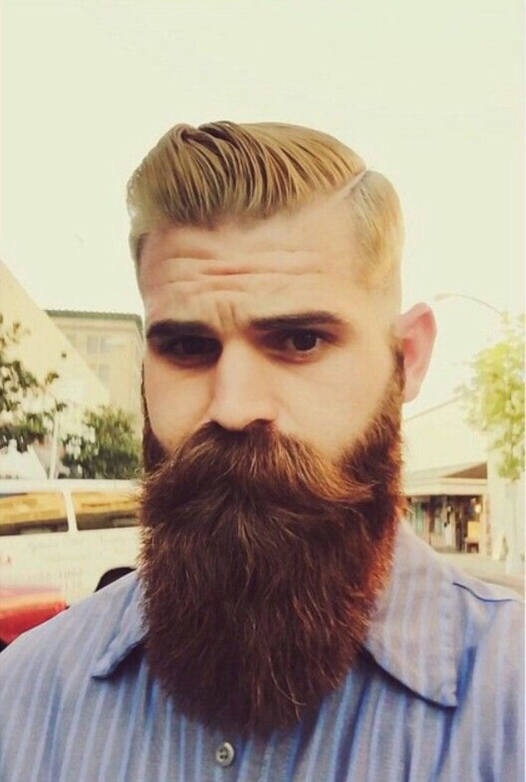 facial hair styles pictures 25 best ideas about beard styles on beards 1746 | 93d826ae0ebdf17f1fd8254ffb871402