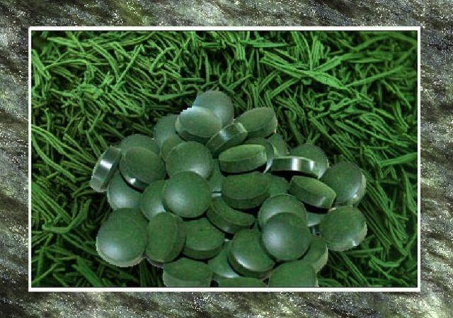 La espirulina es un alga azul-verde que ahora es considerado como otro super solución en la pérdida de peso. Se utiliza como un suplemento de la salud alimentaria, es especialmente rica en proteínas y vitaminas.La espirulina se utiliza en combinación con otros alimentos o puede ser tomado como…