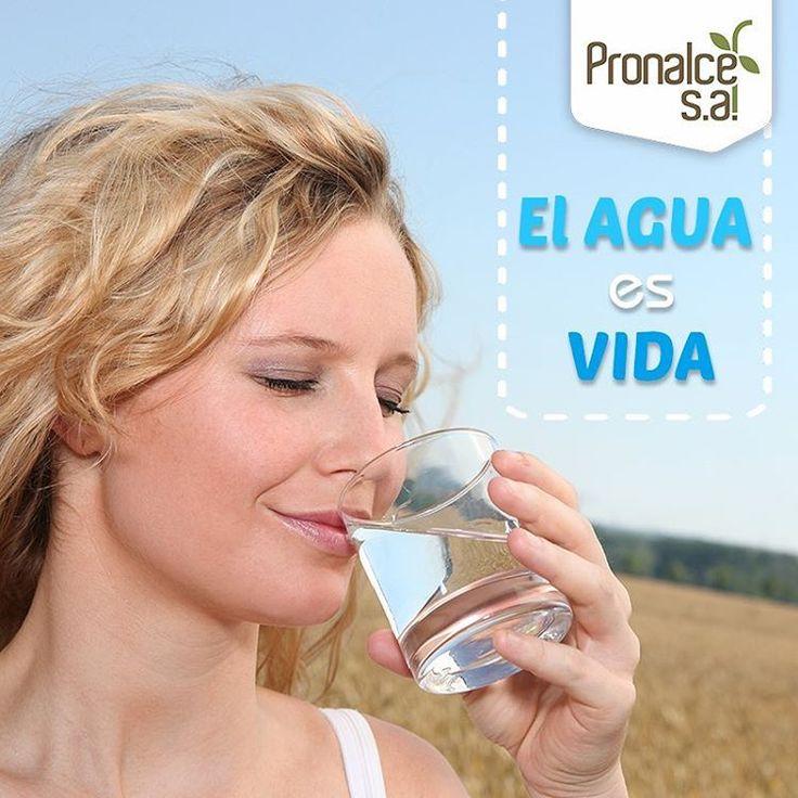 La hidratación es vital para gozar de buena salud, e incluso es beneficiosa para la piel. Por eso a la hora de una adecuada hidratación recuerda: •Beber al menos entre 2 y 2,5 litros de líquidos por día.  •Prefiera el agua potable y pura para hidratarte.    #Pronalce #Avena #Wheat #Trigo #Cereal #Granola #Fit #Oats #ComidaSaludable #Yummy #Delicious #Tasty #Instagood #Delicioso #Sano #HealthyFood #Breakfast #Protein #Nutrición #Cereales