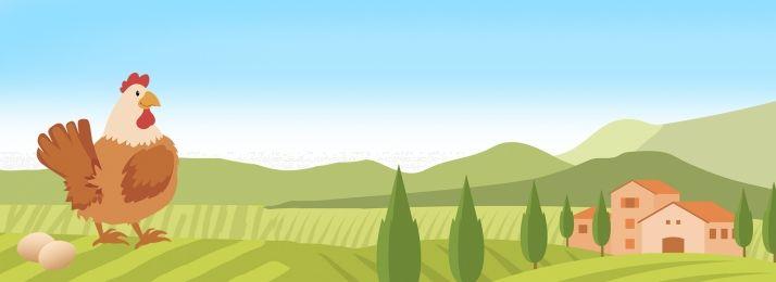 أخضر عضوي مزرعة دجاج In 2021 Background Images Wallpaper Backgrounds Chicken Farm