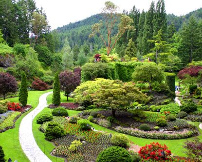 Garden Design Victoria Bc 380 best general landscaping ideas images on pinterest | gardens