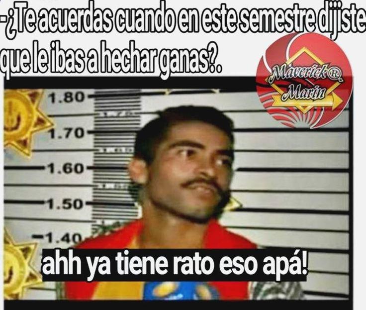 ➟➟➟ Disfruta con lo mejor en chistes de pepito feos, memes steve harvey, memes q linda estas, memes en español de justin y humor grafico lo ultimo. ➟ http://www.diverint.com/memes-tumblr-mejor-pokemon-center/