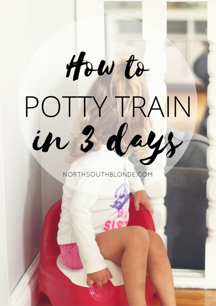 How to Potty Train in Three Days  Sharing my tips and tricks for successfully potty training your toddler!  I had my two-year-old potty trained when I knew she was ready, with no pressure once so ever. Tips include treats, stickers, positive encouragement and lots of communication! Motherhood | Parenting