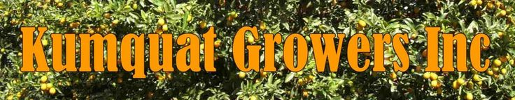 Kumquats Florida Citrus Fruit Recipes Nagami Meiwa Sweet Tart Jam Miewa