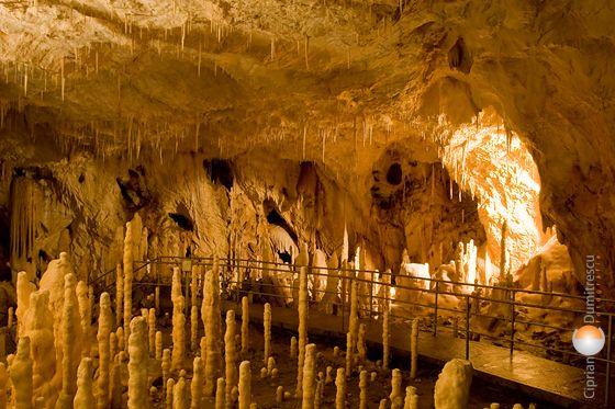 Pestera Ursilor (Bears' Cave), Romania
