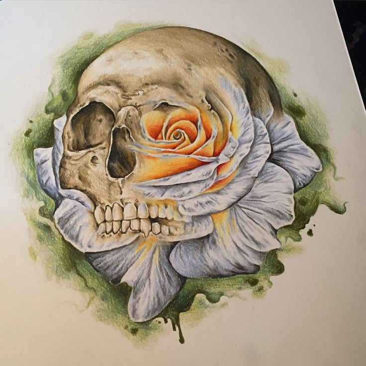 Skull Rose pencil drawing. Original tattoo artwork for sale by Whitney Thompson.