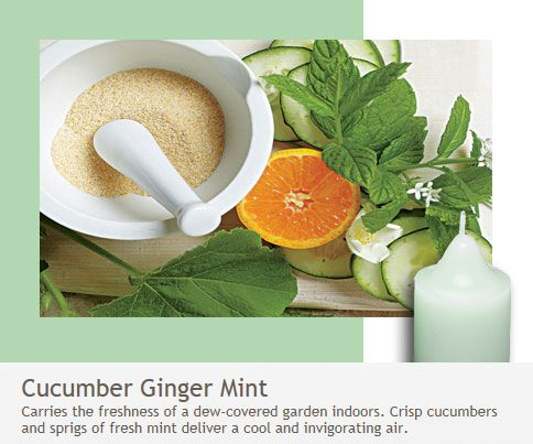 Cucumber ginger Mint: Crisp cucumbers and sprigs of fresh mint deliver a cool and invigorating air.  Bring the freshness of a dew-covered garden indoors!