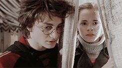 Friendly comment, Hermione was not told to go through the curtain and hug him. That shows how much she likes him and how close there friendship actually is