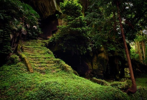 Forest path: Forests, Temples, Paths, Stairs, Green, Caves, Places, Stairways, Fairies Tales