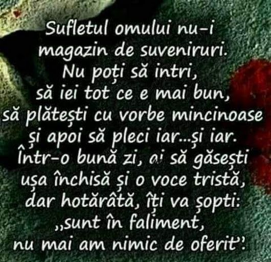Magda Băsu - Google+
