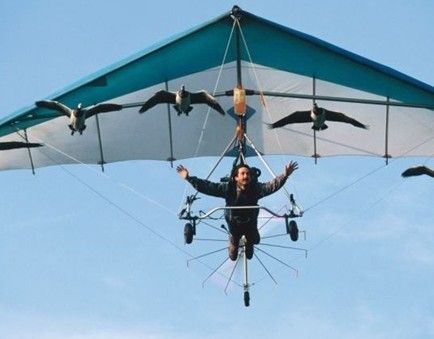 French filmmaker Christian Moullec flies with geese for BBC's Earthflight - What's On Dalian Magical flying machine: Christian Moullec used his microlight plane to recreate this mass migration