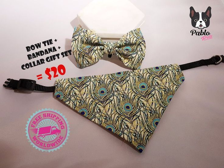 Gift Set Cat or Dog Bow Tie + Bandana (bandanna) + Collar in' Peacock' By Pablo