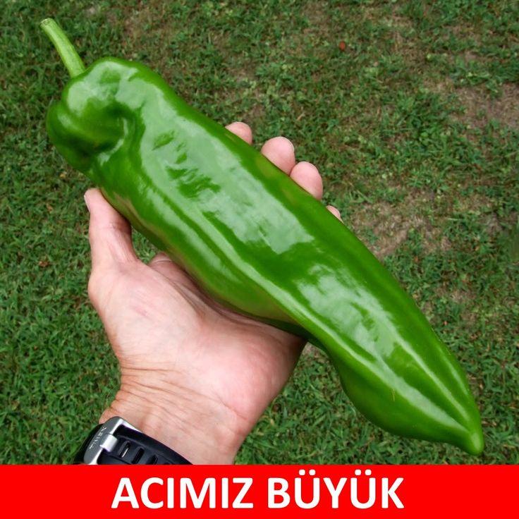 ACIMIZ BÜYÜK. :)  #mizah #matrak #komik #espri #şaka #gırgır #komiksözler #caps
