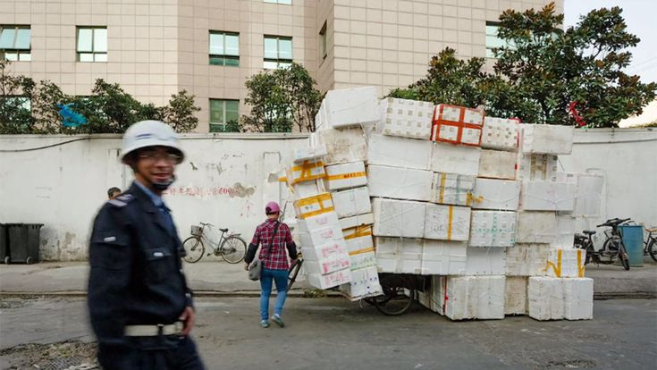 As China shifted from a small-farm economy to an industrial powerhouse over the past generation, there's been an enormous demographic shift, with some 282 million migrant labourers splitting their time between cities and their rural homes. For Wo Guo Jie, who makes her living in Shanghai collecting styrofoam boxes from markets and reselling them to a seafood wholesale market, this transformation has meant spending as many as three years at a time away from her family farm, where her children…
