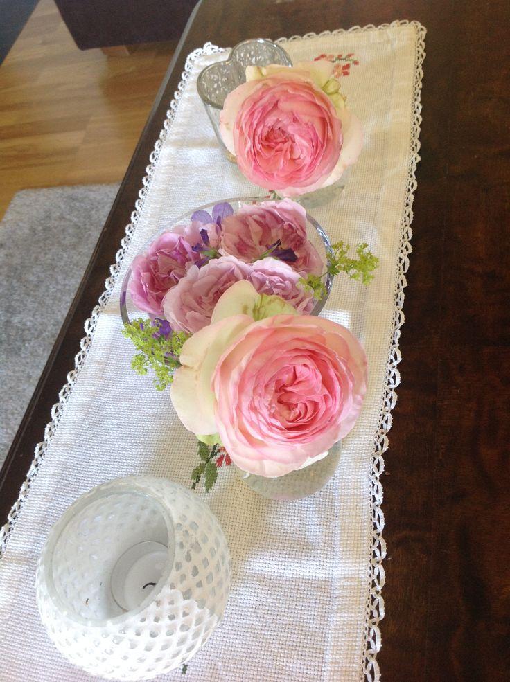Nydelig rose Eden tatt inn til pynt.
