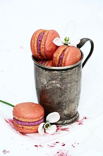 Blueberry and Mascarpone Macarons
