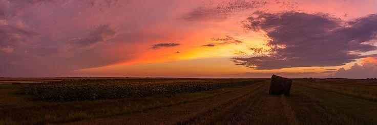 Woodlands Sunset Panorama by Nebojsa Novakovic on 500px