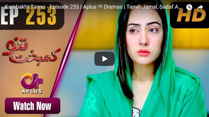 Kambakht Tanno Episode 253 in HD | Pakistani Tv Dramas Online