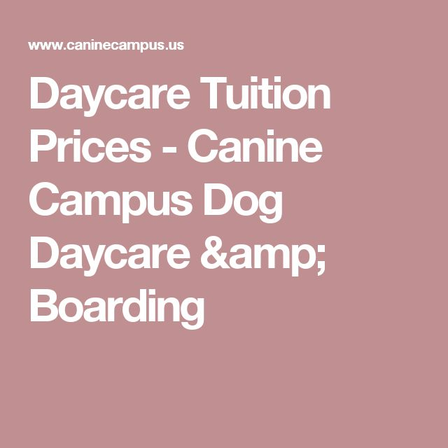 Daycare Tuition Prices - Canine Campus Dog Daycare & Boarding