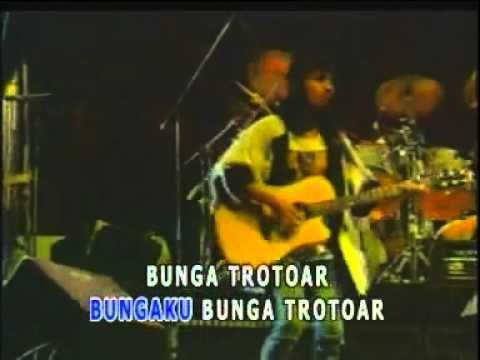 Swami - Bunga Trotoar