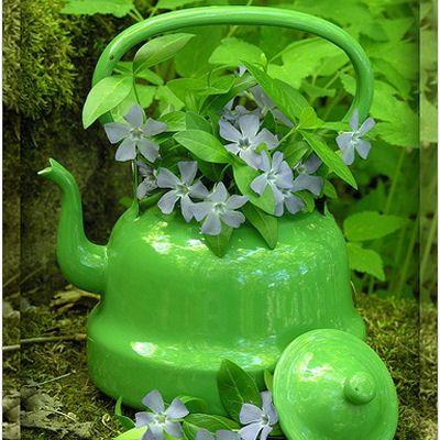 Tea Kettle Planter