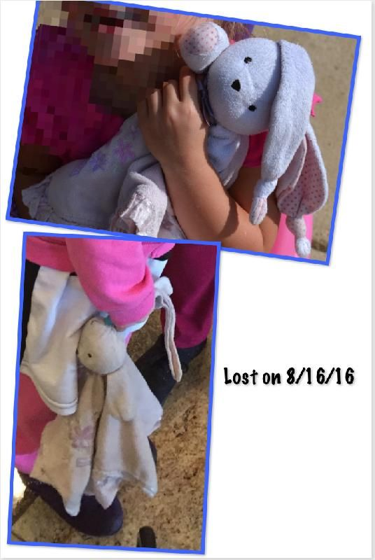 Lost on 16 Aug. 2016 @ Pennsylvania (South Central PA in Franklin County). Bunny…