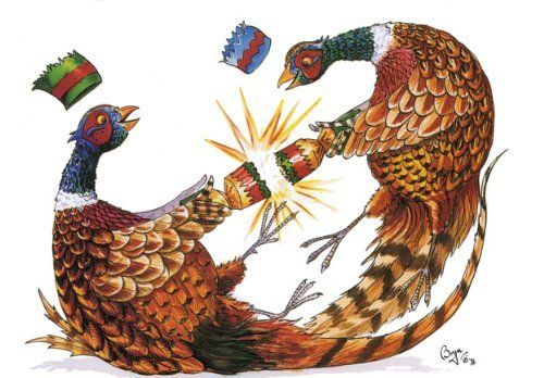 Festive Pheasants Christmas Card by Bryn Parry by Bryn Parry, http://www.amazon.co.uk/dp/B00GKT5O1K/ref=cm_sw_r_pi_dp_SpSFsb0WCEPQ9