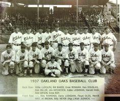 Oakland Baseball ...