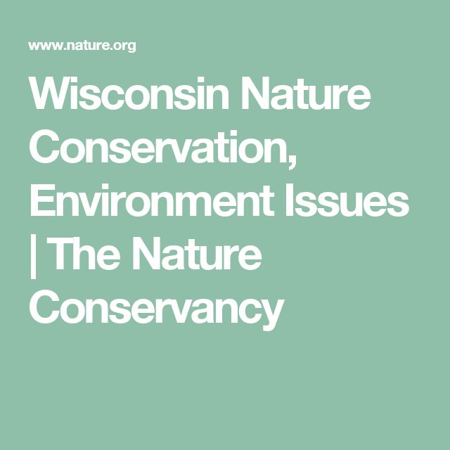 Wisconsin Nature Conservation, Environment Issues | The Nature Conservancy