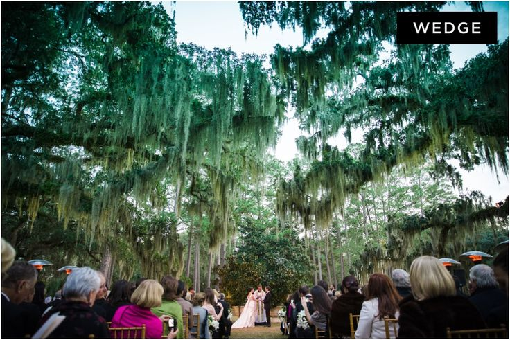 Ceremony under oak trees covered in Spanish moss.