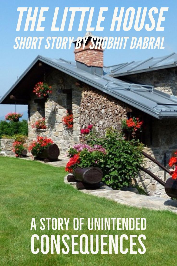 A short story of unintended consequences by Author Shobhit Dabral
