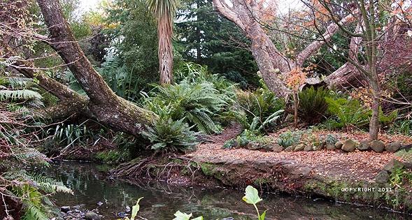 Google Image Result for http://www.masey.com.au/wp-content/uploads/2011/05/go-natural-go-dunedin-garden-tour%25E2%2580%2593day-4.jpg