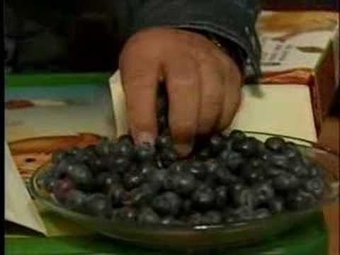 Korean Blueberries - part 1