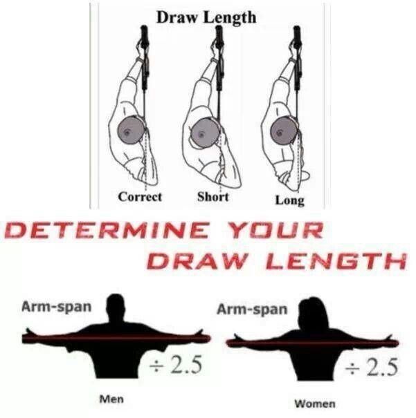 how to measure draw length for recurve bow