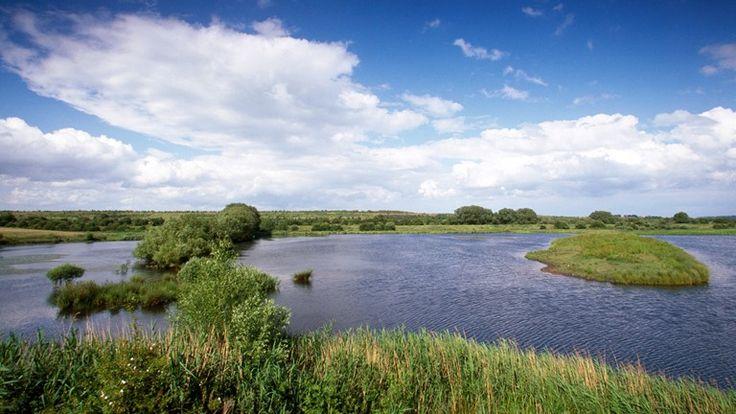 Dearne Valley, RSPB Nature Reserve