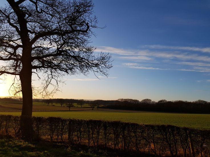 Thrintoft i North Yorkshire, England. I dag 13 Februar 2018. 2°C. Thrintoft in North Yorkshire, England. Today 13th. February 2018. 2°C.
