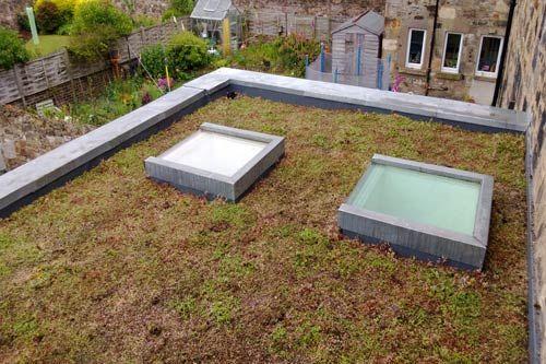 domestic sedum roof in Edinburgh