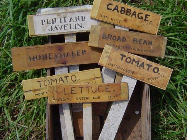 Таблички с надписями на садовом участке
