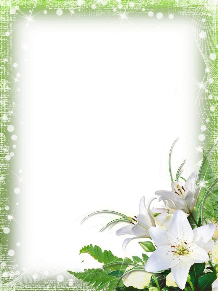 Green-PNG Photo Frame with Flowers