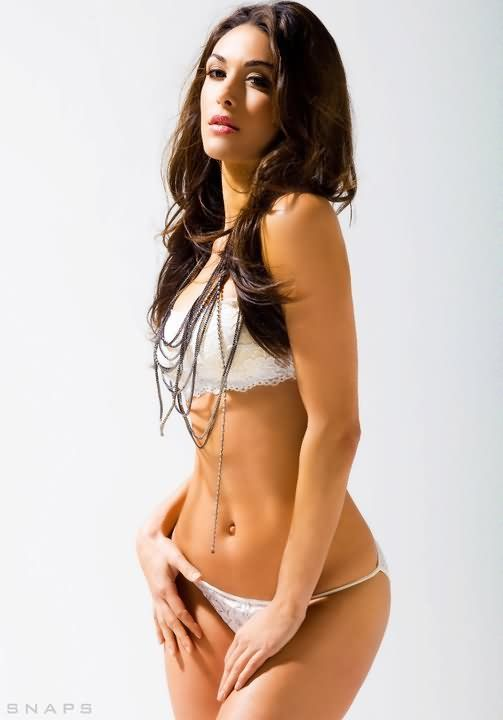80 Best Images About Nikki And Brie Bikini Photos On