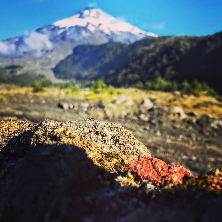 It's funny how you can sometimes be so focused on little things that you don't notice the bigger picture.  #hiddenchile #volcanvillarrica
