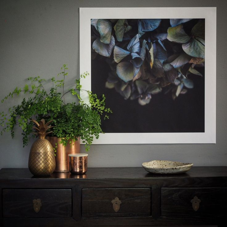 The Magnolia Grandiflora is now available as a photographic print.