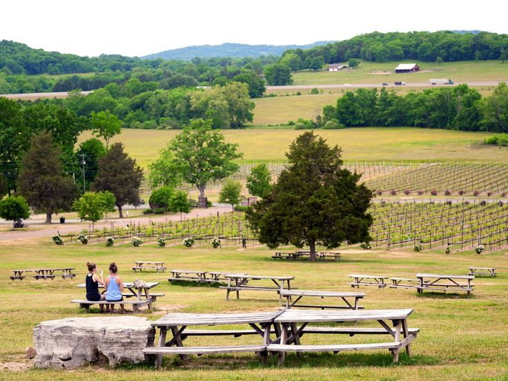 women sitting at wooden table with backs to the camera in front of a sprawling vineyard