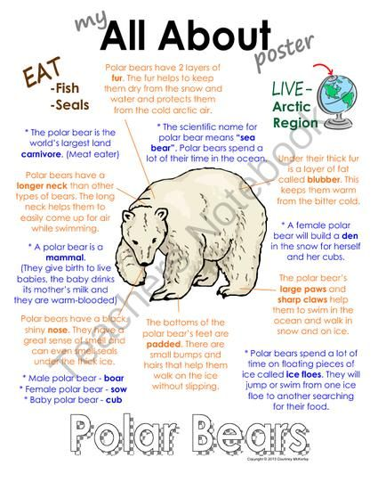 """My All About Polar Bears Book - (Arctic/Polar Animals) from Courtney McKerley on TeachersNotebook.com (9 pages)  - This """"All About"""" book will be a fun addition to your classroom and lessons on polar bears. This book is also offered as part of a polar animal bundle pack (others are Emperor Penguin, walrus, caribou, Arctic wolf)! (Workbook, worksheet, printable, unit study, lesson)"""