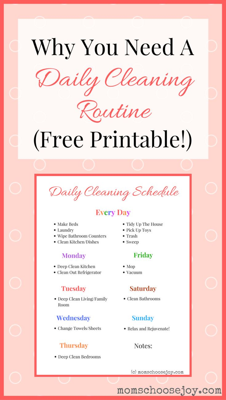 why you need a daily cleaning routine  free printable